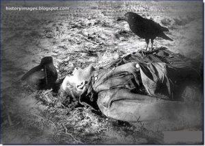 war-brutal-images-dead-german-soldier-crow