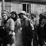 German military brothels in World War II